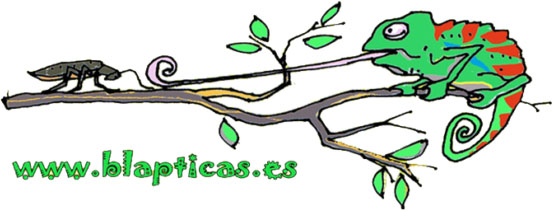 Logo-Blapticas.es